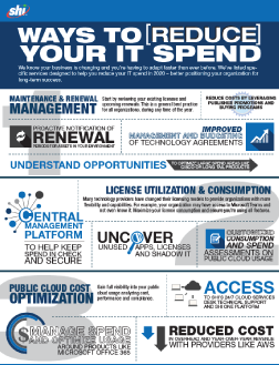 Reduce IT Spend Infographic