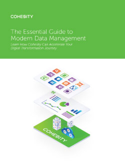 Essentials Guide to Data Management Thumbnail