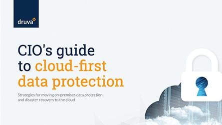 CIOs Guide Thumbnail