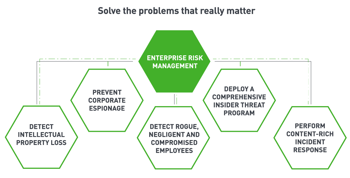 Enterprise Risk Management: Detetect Intellectual Property Loss, Prevent Corporate Espionage, Detect rogue nigligent and compromised employees, deploy a comprehensive