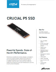Crucial P5 Product Flyer Thumbnail