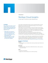 NetApp Cloud Insights Datasheet Thumbnail