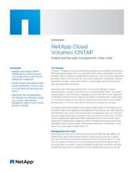 NetApp Cloud Volumes ONTAP Datasheet Thumbnail