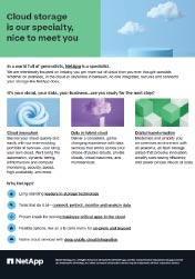 NetApp Cloud Storage Image