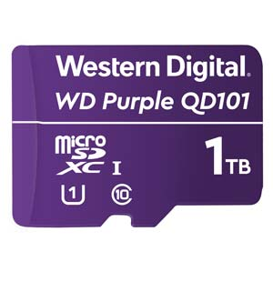 Purple SC QD101
