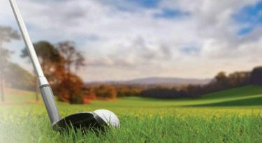 Golf Organization