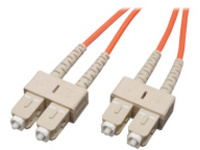 Tripp Lite 30M Duplex Multimode 62.5/125 Fiber Optic Patch Cable SC/SC 100' 100ft 30 Meter - patch cable - 30 m - orange