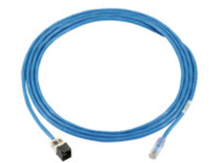 Panduit PanZone Cable Assemblies - patch cable - 18.3 m - blue