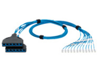 Panduit QuickNet SD Switch Port Harness Plug-To-Cassette - network cable - 4.27 m - blue