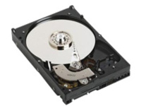 Dell - hard drive - 1 TB - SATA