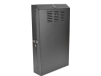 "Tripp Lite 4U Wall Mount Low Profile Rack Enclosure Cabinet 36"" Deep rack - 4U"