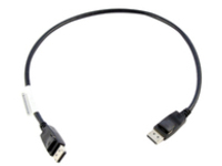 Lenovo DisplayPort cable - 0.5 m