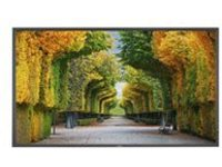 "NEC X554HB 55"" Class (55"" viewable) LED display - Full HD"