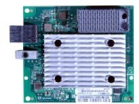 Lenovo ThinkSystem QLogic QML2692 Mezz - host bus adapter