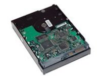 HP - hard drive - 2 TB - SATA 6Gb/s -