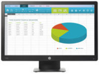 HP ProDisplay P203 - LED monitor - 20""
