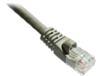 Axiom patch cable - 30.48 m - gray