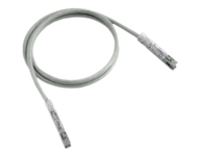 Panduit patch cable - 5.5 m