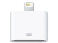 Apple Lightning to 30-pin Adapter - Lightning adapter - 20 cm