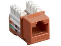 Black Box Value Line CAT5e - modular insert
