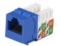 Black Box GigaBase 2 CAT5e Jacks - modular insert