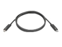 Lenovo Thunderbolt cable - 0.7 m