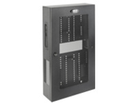 Tripp Lite Wallmount Rack Enclosure 5U Vertical Low-Profile Switch-Depth Adjustable Brackets rack enclosure cabinet - 5U