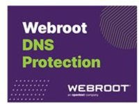 Webroot SecureAnywhere Business - DNS Protection - subscription license (2 years) - 1 PC/Server