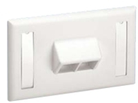 Panduit NetKey Horizontal Sloped Screw-On Faceplate - faceplate