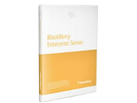 BlackBerry Enterprise Server for IBM Lotus Domino (v. 5.0) - license - 20 users