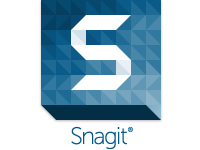 Image of SnagIt ( v. 12.X ) - box pack